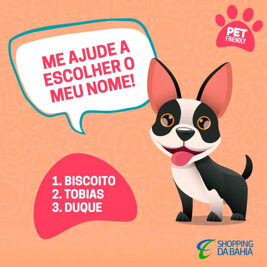 Queremos a sua ajuda para escolher o nome do nosso Masco Dog! \o/ Essas são as três opções, é só colocar o número da sua opção preferida nos comentários e marcar a galera pra votar aqui também! Em breve vamos divulgar o resultado! \o/   Confira o regulamento pet friendly no site (link na bio).   #ShoppingDaBahia #SDB #PetFriendly #DogPark #Animais #Pets #BichinhosDeEstimação #Mascote #MascoteSDB #Salvador #Bahia #DogNoChão