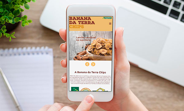 Site Responsivo Banana da Terra Chips 2018